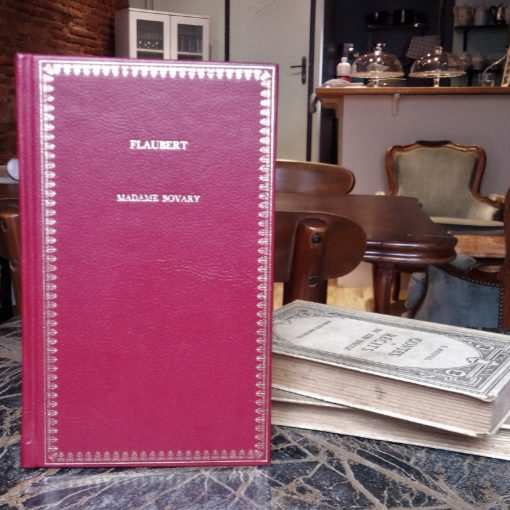 Madame Bovary roman